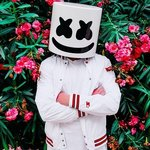 Marshmello and Lil Peep have a collaboration coming out in January!