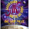 Aaron Kamm & The One Drops w/ One Drop Pulse at Outland Ballroom