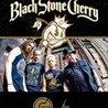 Black Stone Cherry at Hawthorne Theatre 6/7