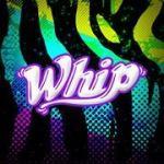 Fiesta Whip
