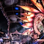 Sonic Bloom: A Unified Field Guide For Late Bloomers